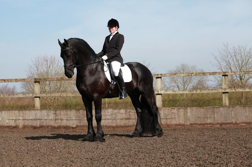 Equestrian Event photographer Cumbria